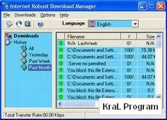 Robust Downloader