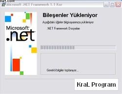 .NET Framework Pre-Release