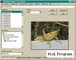NewView Graphics File Viewer