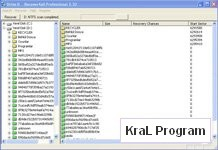 Recover4all Professional 2.32