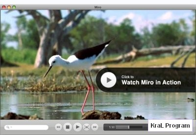 Miro 2.0 Hd Video Player
