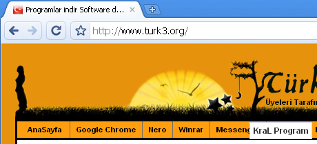Google Chrome 4.0.249.11 Turkce Browser