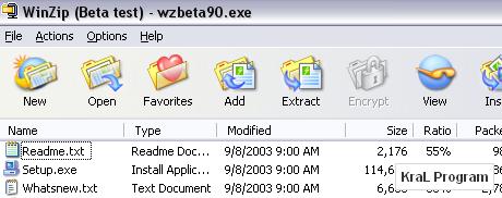 WinZip 14.0 Build 9029 Dosya sikistirma ve acma programi