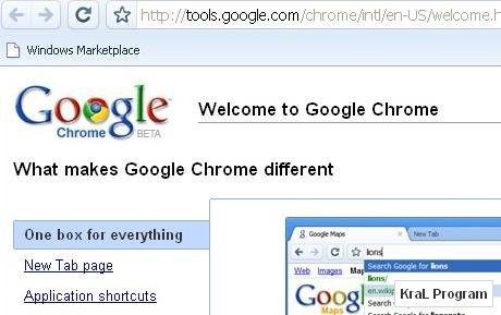 Google Chrome 5.0.342.5 Beta internet browser