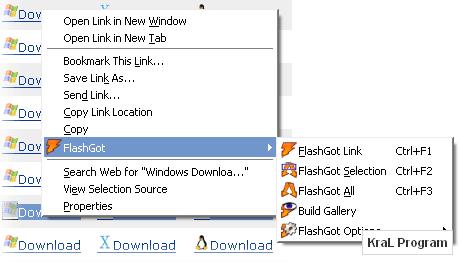 FlashGot 1.2.1.18 Firefox indirme eklentisi