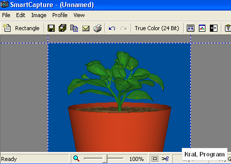 Smart Capture 2.2.1 Ekran fotografi cekme programi