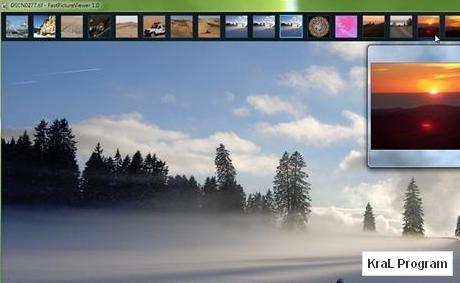 FastPictureViewer 1.3 Build 174 Resim görüntüleyici
